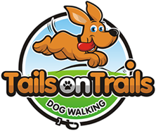 Dog Walking Paddington Dog Walker Woollahra